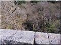 NO7890 : Upstream parapet of the Blackburn Bridge by Stanley Howe