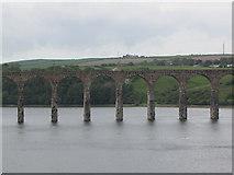 NT9953 : Royal Border Bridge by N Chadwick