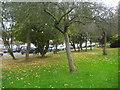 TQ1788 : Woodcock Park by Shaftesbury Avenue by David Howard