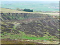 SE0809 : The Laggin Plat quarry face seen across the Swinstey Dike valley by Humphrey Bolton