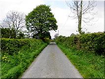 H7480 : New Road, Muntober by Kenneth  Allen