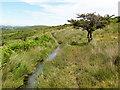 SX6671 : Holne Moor Leat by Tony Atkin