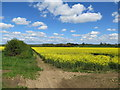 SE9849 : Yorkshire  Wolds  on  a  bright  and  colourful  day by Martin Dawes