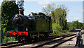 TQ3837 : Running Around at East Grinstead by Peter Trimming