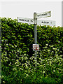 TM4394 : Roadsign on Wood Lane by Adrian Cable