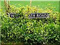 TM4493 : Waterheath Road sign by Geographer