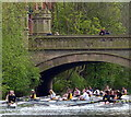 SK5804 : Rowers on the Grand Union Canal by Mat Fascione