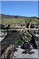 NM4789 : Eroded Dyke by Anne Burgess