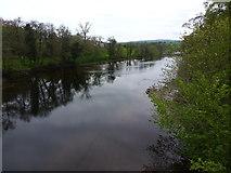 NY5046 : River Eden from Armathwaite Bridge by John H Darch