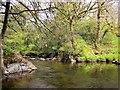 SX6961 : Pool on River Avon by Derek Harper