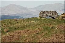 NS2374 : Bridge on the Greenock Cut by Thomas Nugent