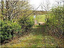 NS2374 : Railway bridge in Spango Valley by Thomas Nugent