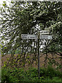 TM4393 : Roadsign on Hollow Way Hill by Adrian Cable
