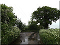 TM4494 : Church Lane, Aldeby by Adrian Cable