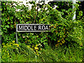 TM4893 : Middle Road sign by Adrian Cable