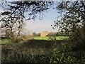 ST5477 : Kings Weston House by Derek Harper