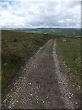 SX7375 : Track across Blackslade Down by David Smith