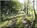 TQ1595 : Track by Hilfield Lane, Bushey by David Howard