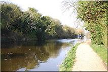 TQ1281 : Grand Union Canal Walk by N Chadwick