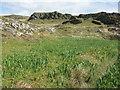 NR3793 : Sliabh Riabhach by M J Richardson