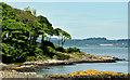 J4583 : The Loughshore, Helen's Bay (May 2014) by Albert Bridge