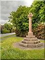 SJ4564 : Waverton Millennium Cross by David Dixon