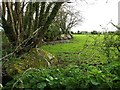 SX0658 : Large stone slabs used as field boundary, near Higher Gready Farm by David Gearing