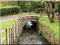 SJ4553 : Millrace, Stretton Mill by David Dixon