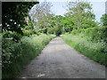 SJ4145 : Entrance to Dolennion Farm by Jeff Buck