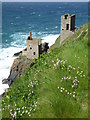 SW3633 : The Crowns engine houses at Botallack by Rod Allday