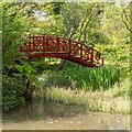 SP5141 : The Red Bridge, Thenford Arboretum by David P Howard