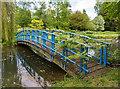 SP5141 : The Blue Bridge, Thenford Arboretum by David P Howard