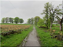 NS5379 : West Highland Way near Easter Carbeth by Chris Heaton
