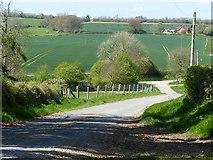 SU8415 : Lane near Staple Ash Farm by Chris Gunns