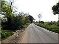 TM4888 : Church Road, Mutford by Geographer