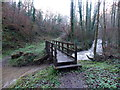 SO5100 : Wooden footbridge across the Angiddy west of Tintern by Jaggery