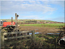 NZ9404 : Footpath  over  field  to  the shore  at  Robin  Hood  Bay by Martin Dawes