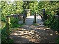SU9946 : Bridge over the Wey navigation by Alan Hunt