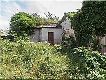 TL4658 : Derelict site off Newmarket Road by Kim Fyson