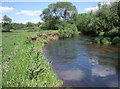 SJ7966 : River Dane by Stephen Burton