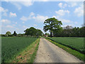SE6675 : Ebor Way approaching Hovingham by Pauline E
