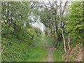 SS6946 : Abandoned trackbed, Lynton and Barnstaple Railway by Roger Cornfoot