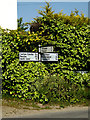 TM4988 : Roadsign on Chapel Road by Geographer
