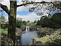 NY9027 : Low Force waterfall by steven ruffles