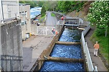 NN9357 : Fish ladder, Pitlochry dam by Jim Barton
