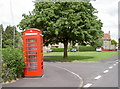 ST6143 : Box on the green by Neil Owen
