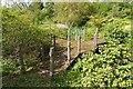 SP5141 : Three way bridge, Thenford Arboretum by David P Howard