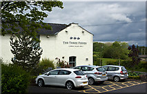 SD7139 : The Three Fishes by Ian Greig