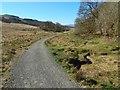 NS5280 : West Highland Way near Dumgoyach by Lairich Rig