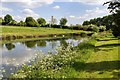 SP5241 : New Lake, Thenford Arboretum by David P Howard